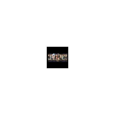 ECRAN MAGE L'ASCENSION V20